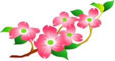 花みずきイラスト
