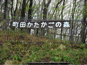 かたかごの森 画像