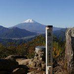 高川山の写真