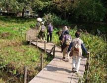 座間谷戸山公園写真