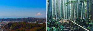 衣笠山&武寺の写真